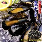ムール貝 高級ムール貝(ボイル / 殻付き)1kg(500g×2P)