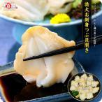生つぶ貝 お刺身用 肉厚 生つぶ貝(寿司用開き)500g[送料無料]