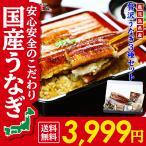 Yahoo Shopping - (敬老の日 土用 丑の日) 鹿児島県産 贅沢うなぎ3種食べ比べセット (長蒲焼き約130g×1尾、カットうなぎ蒲焼き50g×1枚、きざみうなぎ60g×1袋)