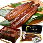 うなぎ蒲焼き 国産 鰻 2尾セット(170g×2尾)贈答用 送料無料(離島を除く)