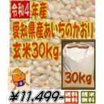 あいちのかおり 令和元年愛知県産 30kg(玄米)か27kg(白米) 精米無料送料無料 一部地域は重量別特別送料が加算されます