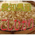 こしひかり 5kg(玄米) 令和2年産 愛知県産
