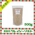 日本緑茶センター 業務用クレイジーソルト 500g
