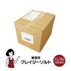 日本緑茶センター 業務用クレイジーソルト 25ポンド