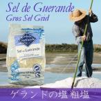 ゲランドの塩《粗塩》1kg