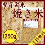 焼き米 250g 送料無料 発芽玄米 お試し 二度焼き