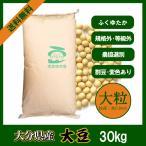 大分県産大豆 規格外・大粒 30kg 令和1年産