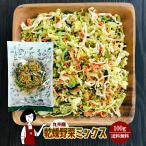 九州産 乾燥野菜ミックス 100g 〔チャック付〕