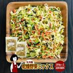 九州産 乾燥野菜ミックス 100g×2〔チャック付〕