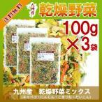 九州産 乾燥野菜ミックス 100g×3 〔チャック付〕