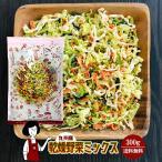 九州産 乾燥野菜ミックス 500g 〔チャック付〕