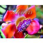 送料無料!2018年 ハワイカレンダー Beautiful Hawaiian Flowers  美しいハワイの花々 ハワイアン雑貨