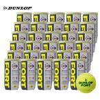 「365日出荷」DUNLOP ダンロップ 「FORT フォート [2個入]1箱 30缶/60球 」テニスボール 「フォート60周年キャンペーン対象」 『即日出荷』