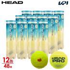 ヘッド HEAD テニスボール  「KPIオリジナルモデル」HEAD PRO ヘッドプロ 4球入り1箱 12缶/48球  577124