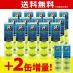 「増量キャンペーン」BRIDGESTONE ブリヂストン TOUR PRO ツアープロ 1箱 15缶+2缶=17缶/68球 テニスボール 『即日出荷』
