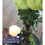 DULTON ダルトン ガラスベース 30cm 花瓶 フラワーベース 花びん 花器 一輪挿し キャンドルホルダー ろうそく立て 蝋燭立て おしゃれ 北欧 ディスプレイ用
