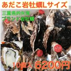 岩牡蠣Lサイズ10個