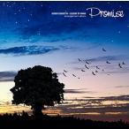 聖剣伝説 LEGEND OF MANA Arrangement Album -Promise- 中古 良品 CD