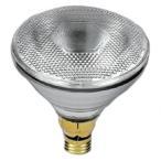 ナショナル ハイビーム電球 150W形 屋外用 BF110V120WH