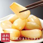 国産 たまりらっきょう漬 120g  /お中元/祝 漬物 たまり漬け ラッキョウ たまり漬け