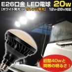 LED 作業灯 E26 集魚灯