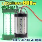LED ╜╕╡√┼Ї ┐х├ц╜╕╡√┼Ї 600w е░еъб╝еє 100v 110v 120v AC└ь═╤ едел─рдъ еыб╝есеє ╠ы─рдъ ещеде╚ ╛╚╠└ е╖еще╣еже╩ео еве╕еєе░ е╩еде╚е┐едеще╨д╦дт