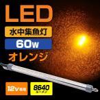 ╜╕╡√┼ЇLED ┐х├ц ╜╕╡√┼Ї екеьеєе╕ 8640еыб╝есеє 60w 12v LED ▄Ї┐з е╖еще╣еже╩ео╡∙ едел ╠ы─рдъ еве╕еєе░ есе╨еъеєе░