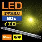 ╜╕╡√┼ЇLED ┐х├ц ╜╕╡√┼Ї едеиеэб╝ 8640еыб╝есеє 60w 12v LED ▓л┐з е╖еще╣еже╩ео╡∙ едел ╠ы─рдъ еве╕еєе░ есе╨еъеєе░