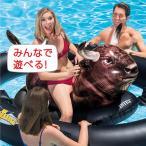 intex 浮き輪 フロート ロデオ 特大 おもしろ インスタ映え インテックス プール 海 浮き輪 うきわ 大きいサイズ 子供用 大人用  _85452