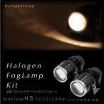 H3 55W フォグランプ ヘッドライト 汎用 プロジェクターランプ 2個 加工 埋め込み ステー 後付け ハロゲン HID/LED 交換可能 あす つく _28029