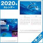 Yahoo!ケイエスエスサービス送料270円 カレンダー 2019 壁掛け 暦  リラクゼーション ブルー NK-32 平成31年 セール