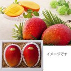 お中元 マンゴー フルーツ沖縄県産マンゴー(2玉)果物 旬 詰め合わせ 送料無料 2020