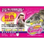 Yahoo!神奈川トヨタ ぎがうぇぶJoint Candy 新色(ジョイントキャンディー) / アイランドクルーズFCフネクロスタイル
