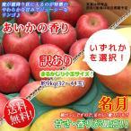 あいかの香り/名月 -訳あり- 長野県産 約9kg32〜44玉 まるかじり 小玉サイズ