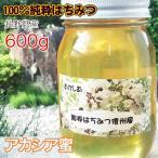 <蜂蜜> アカシアの純粋はちみつ 長野県産の天然蜂蜜 600g [2020年新物]