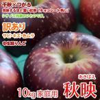 秋映りんご 信州産 約10kg お得ご家庭用 訳あリ