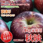 秋映りんご 送料無料 5kg 訳あり 完熟はチョコレート色に♪