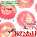 秋ひかり りんご <新品種 > 3キロ 長野 リンゴ