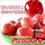 アルプス乙女 ちっちゃいりんご 10kg S〜3L混