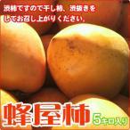 柿子 - 2014シーズン限定 蜂屋柿 [小玉]渋柿 5キロ 渋柿の状態でお届けします