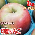 印度りんご インド 3kg9-13玉
