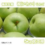 祝(いわい) わけあり 極早生青りんご 5kg 加工用バラ入