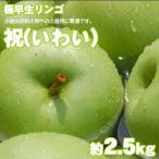 祝(いわい) 極早生青りんご 約2.5kg 12玉前後