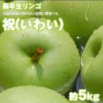 祝(いわい) 極早生 青りんご 約5kg