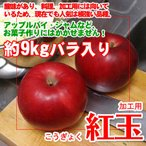 訳あり-サビ・キズあり 紅玉りんご 約9kg加工用バラ入り 送料無料