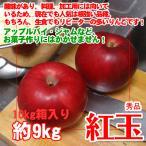 紅玉 りんご 10kg箱入り 約9kg 秀品 クッキングりんご!