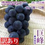 巨峰 家庭用 4kg7-12房 ぶどうの一大産地・長野産 レアブドウ