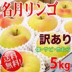 名月 -訳あり- 送料無料 長野県産 約5kg 家庭用