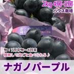 ぶどう ナガノパープル (ハウス)  お中元 フルーツ 送料無料 特選品2kg