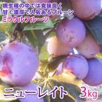 ニューレイト 長野産 3kg ミラクルフルーツ・プルーン